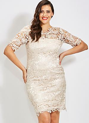9753331509 Plus Size Mother of the Bride Dresses | Curvissa